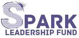 Asian Minnesotan Leaders Receive Spark Leadership Fund