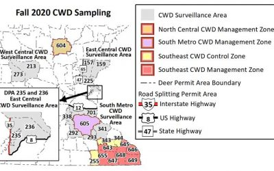 DNR: Deer Hunters Should Plan Ahead And Check Latest Rules