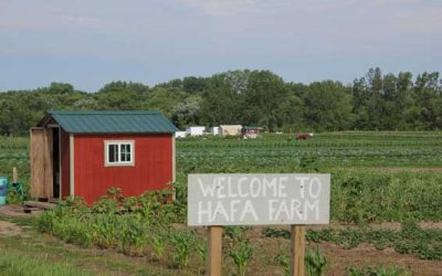 The Hmong American Farmers Association Is Included In The 2020 Minnesota State Legislature Infrastructure Bonding Bill