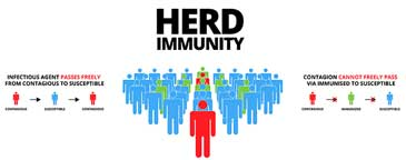 What About Herd Immunity